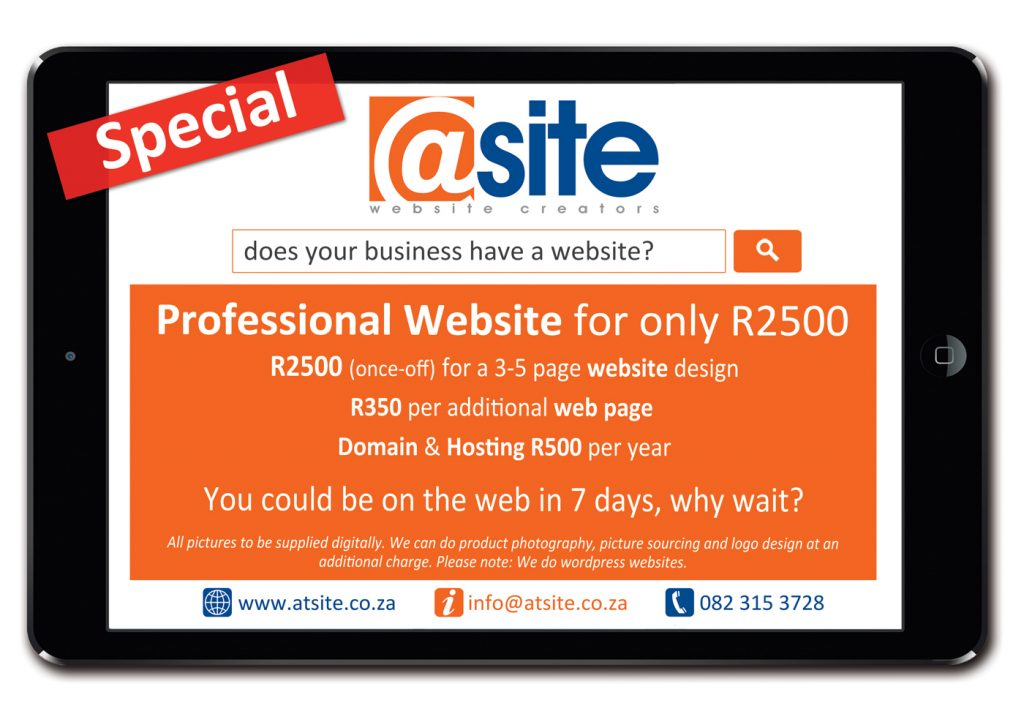 professional website special