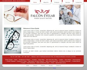website design for falcon eyelab